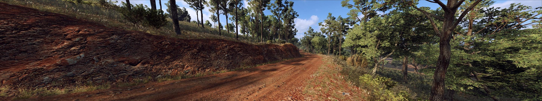 1 BONDI FOREST.jpg