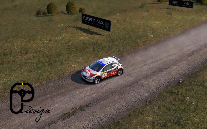 207 dirt rally 2.jpg