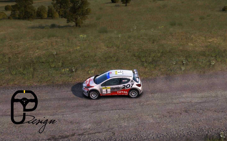 207 dirt rally 3.jpg