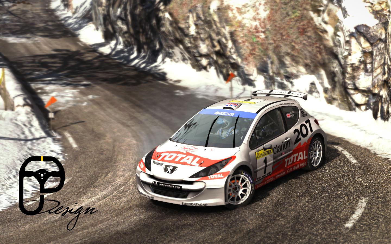 207 dirt rally 5.jpg