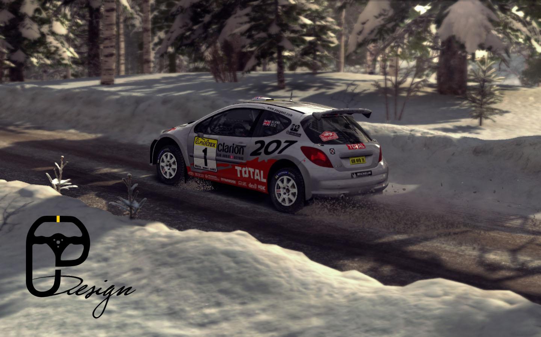 207 dirt rally 6.jpg
