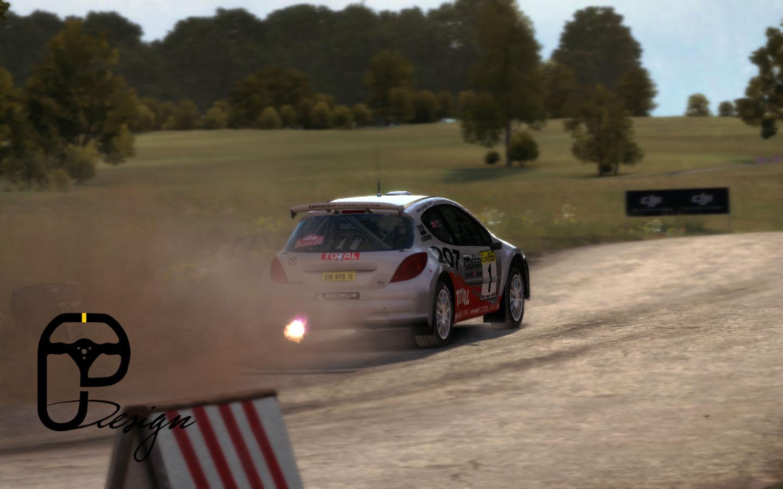 207 dirt rally 7.jpg