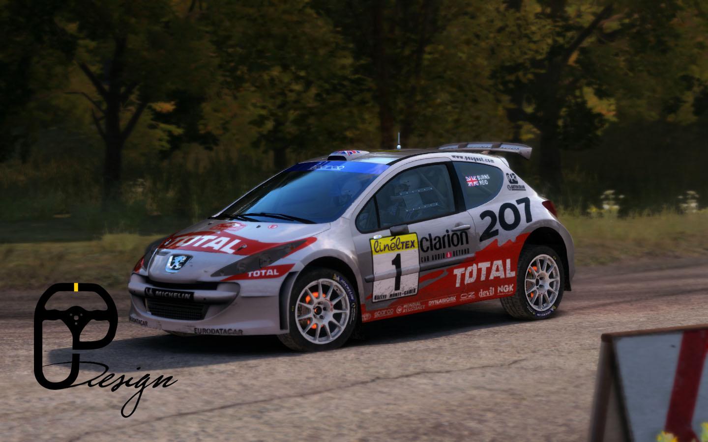207 dirt rally 9.jpg