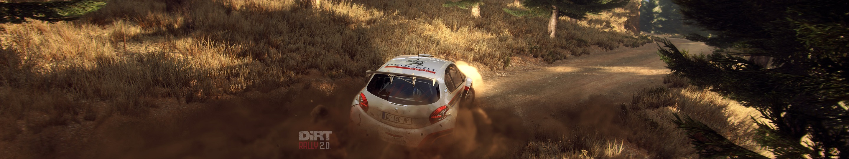 3 DIRT RALLY 2 GREECE with R5 PEUGEOT copy.jpg