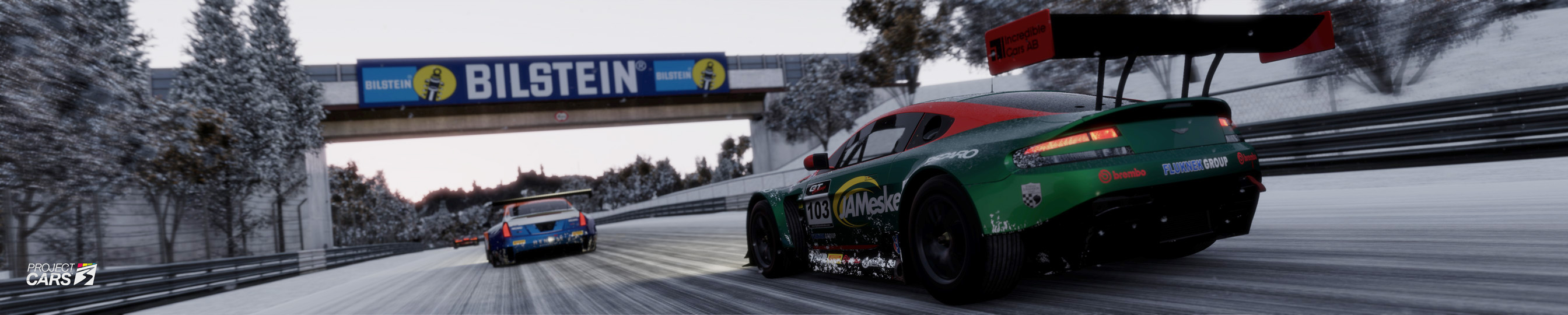 7 PROJECT CARS GT3 at NORDS Snow crop copy.jpg