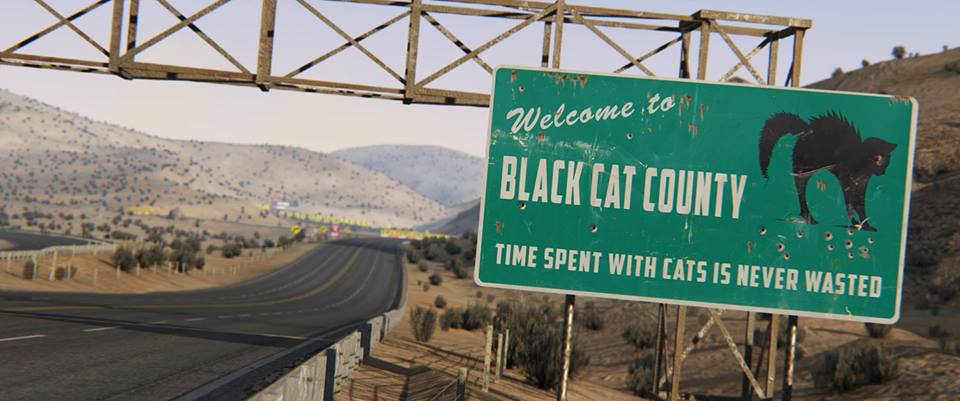 AC Black Cat County.jpg