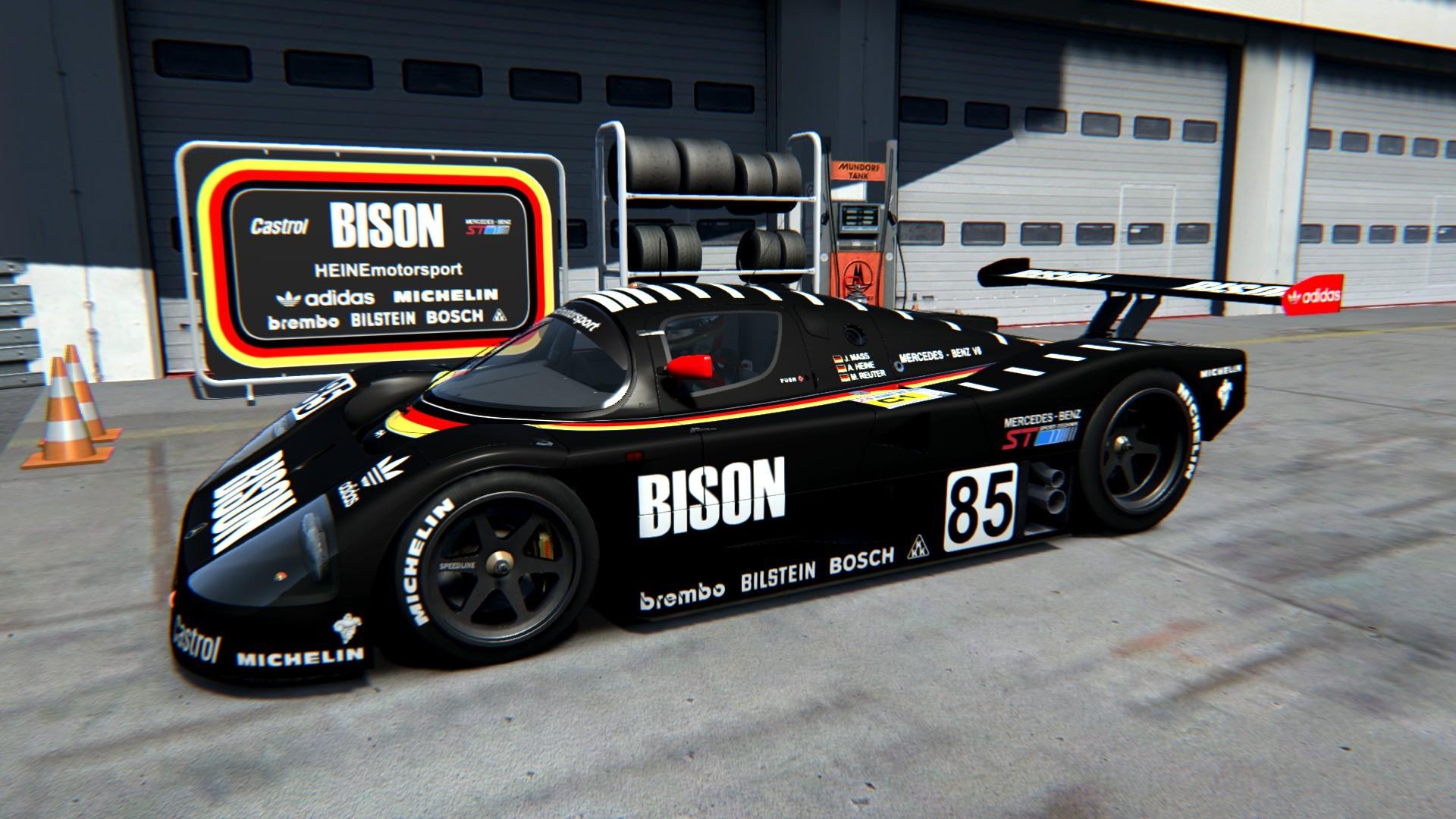 bison_c9_02.jpg