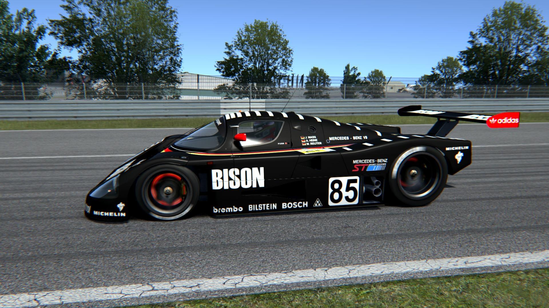 bison_c9_03.jpg