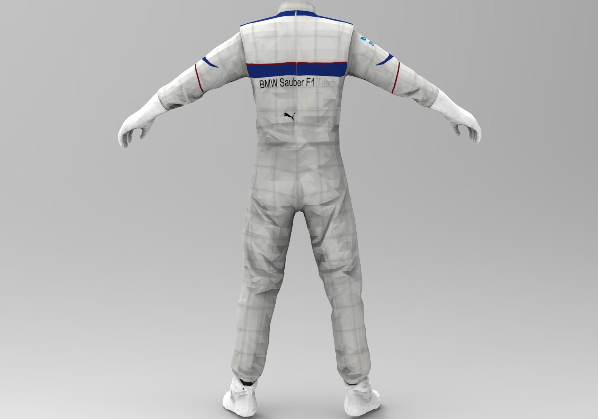BMW Sauber Back.jpg