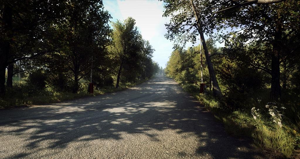 DiRT 2.0 Rally Germany 2.jpg