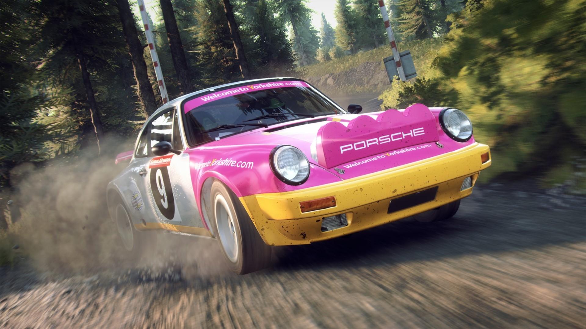 DiRT Rally 2.0 Porsche 2.jpg