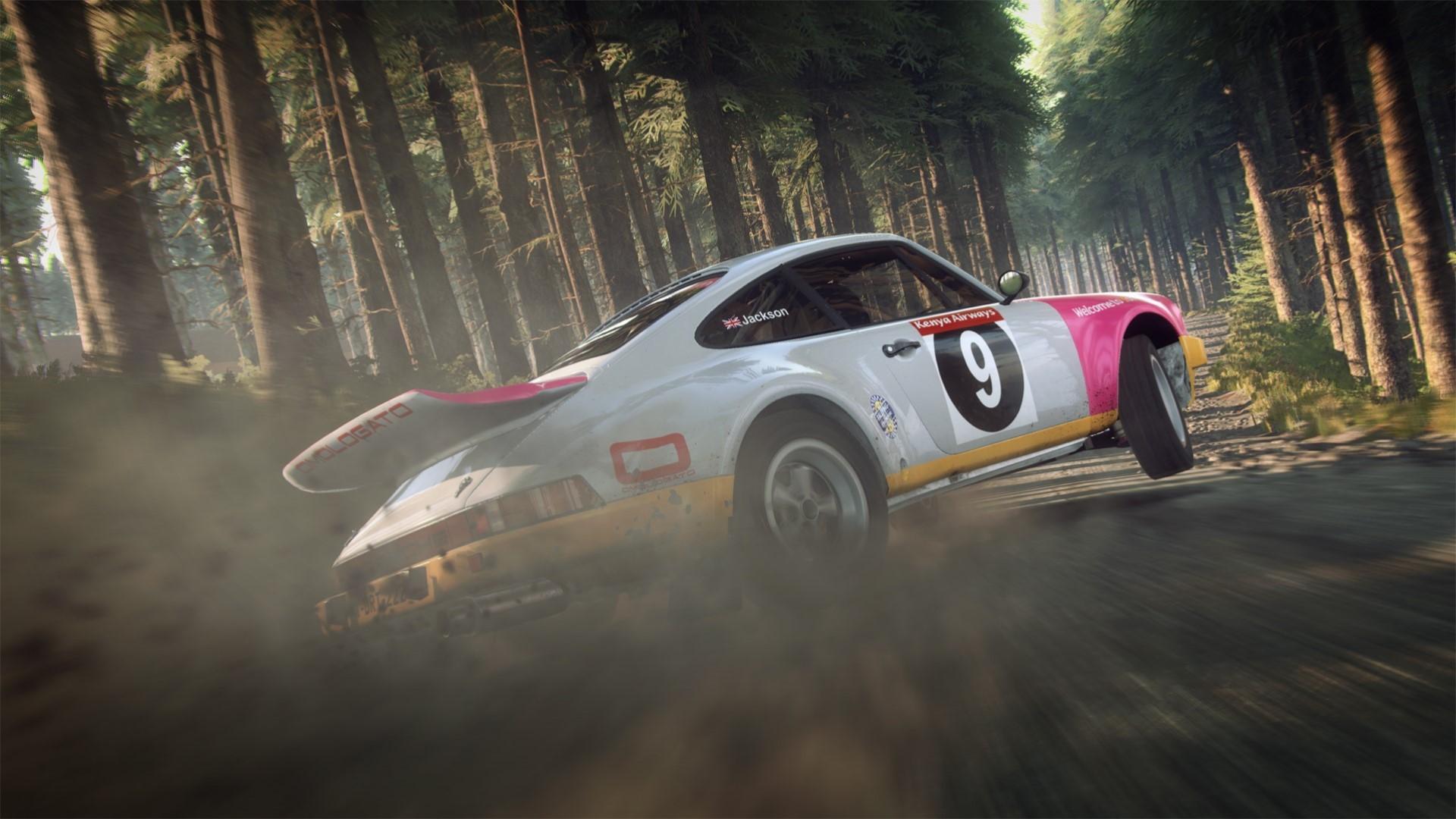 DiRT Rally 2.0 Porsche .jpg