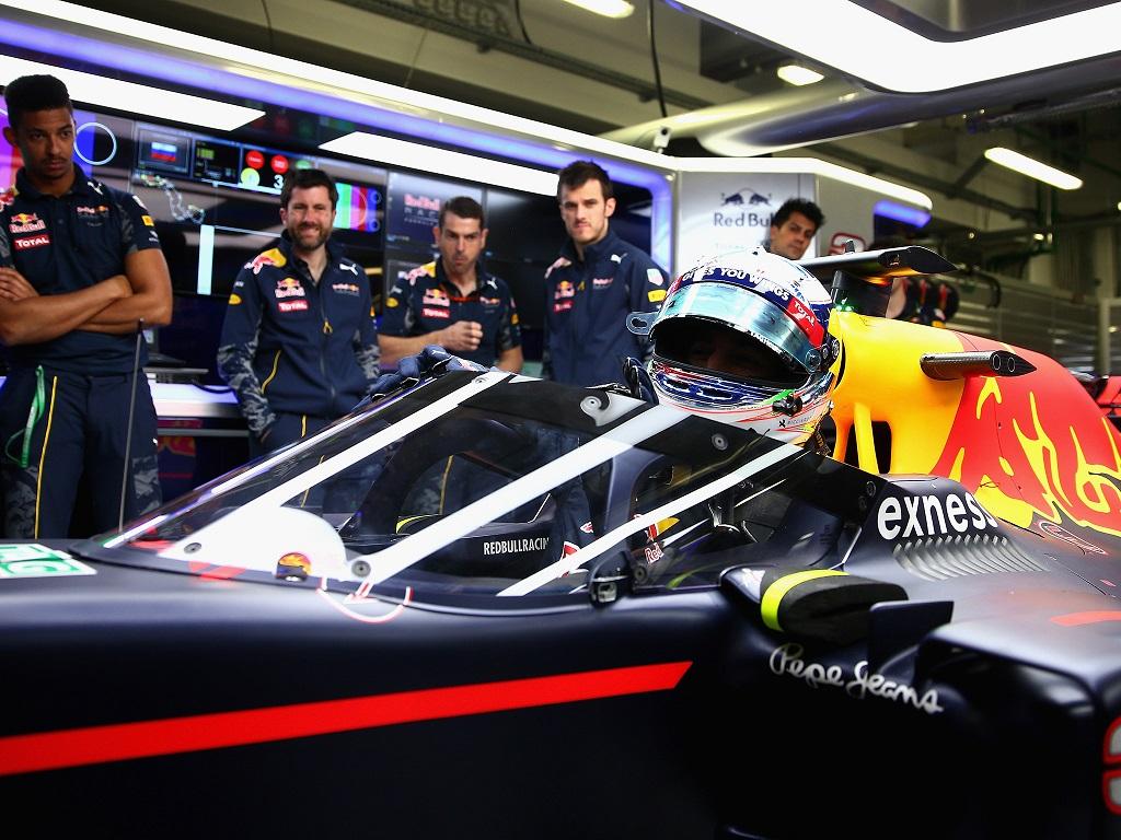 F1 Shield 2.jpg