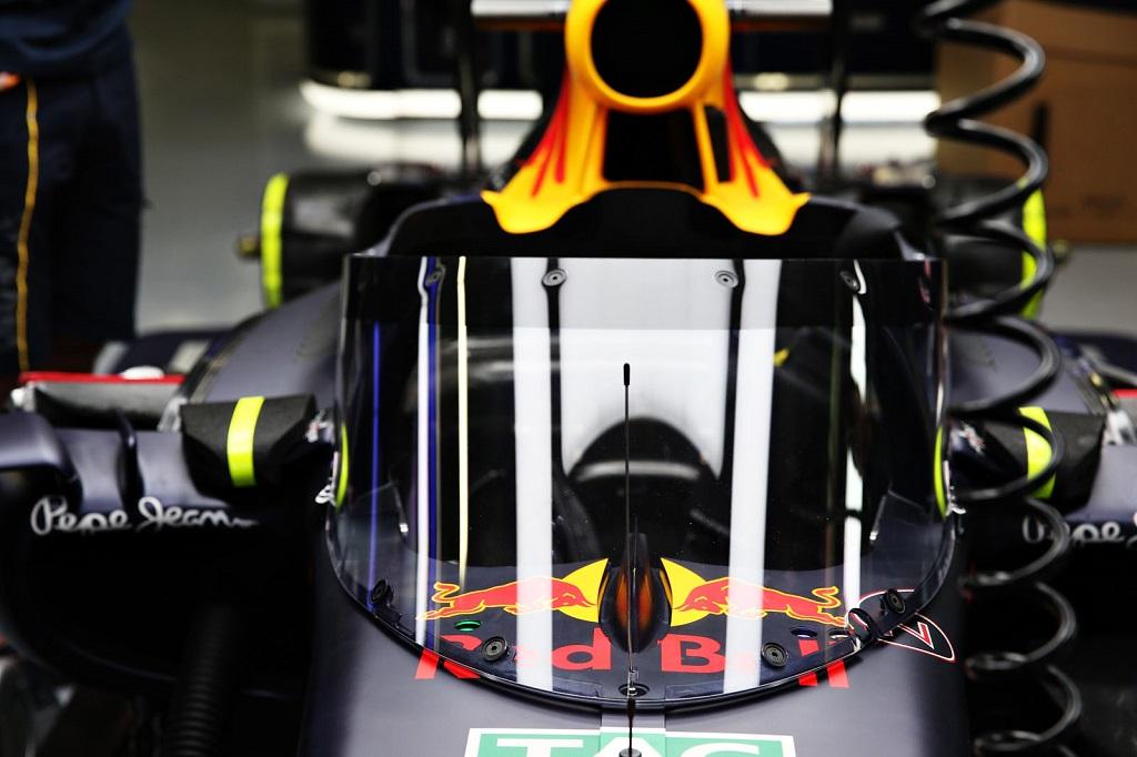 F1 Shield 3.jpg
