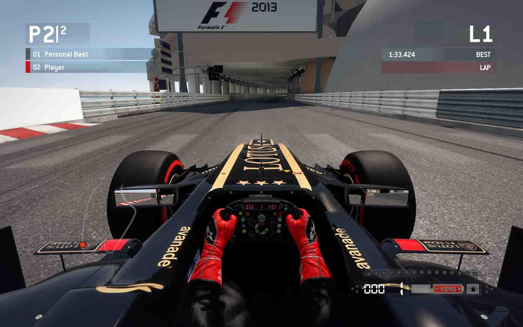 F1_2013 2013-11-05 00-06-31-74 copy.jpg