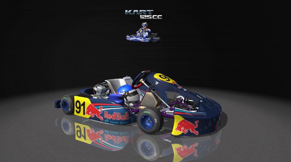 Karts_AMS_125CC.jpg