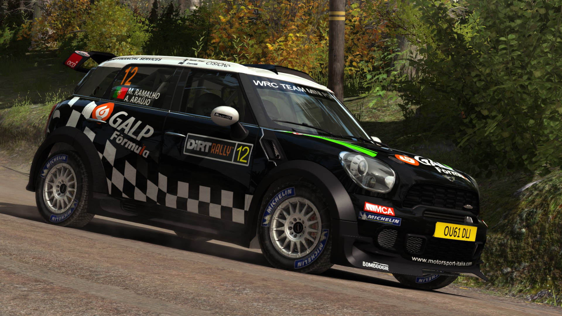 mini_2012_DiRT_Rally_01.jpg