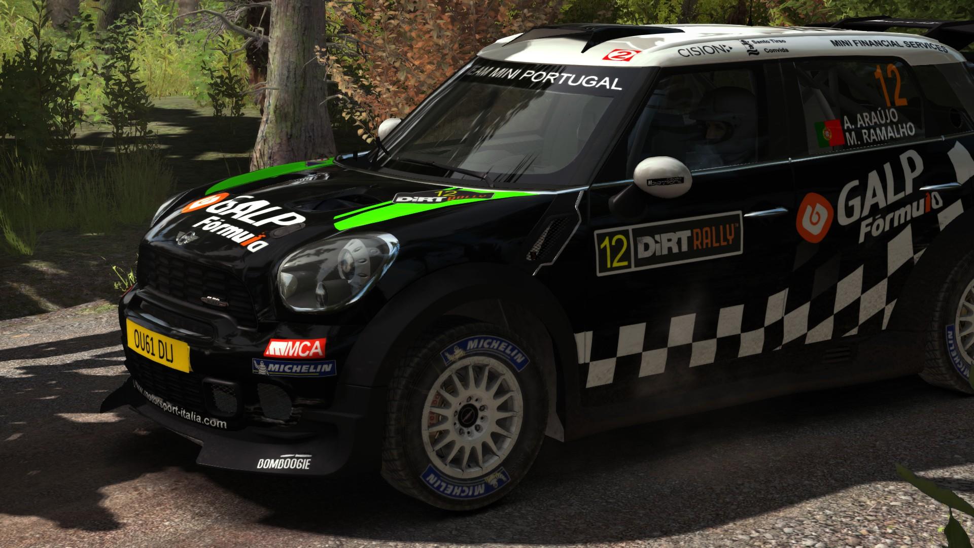 mini_2012_DiRT_Rally_02.jpg