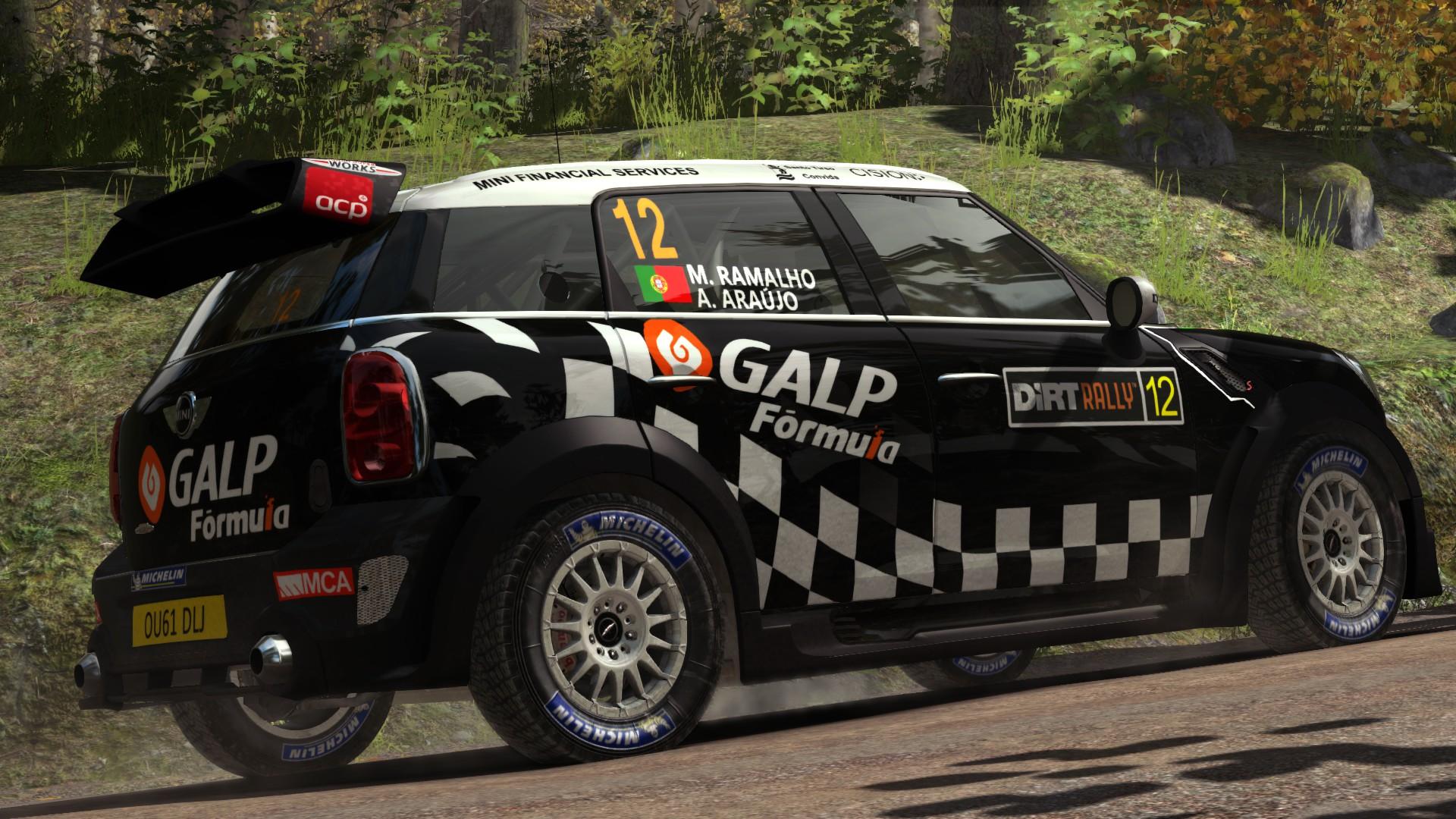mini_2012_DiRT_Rally_03.jpg