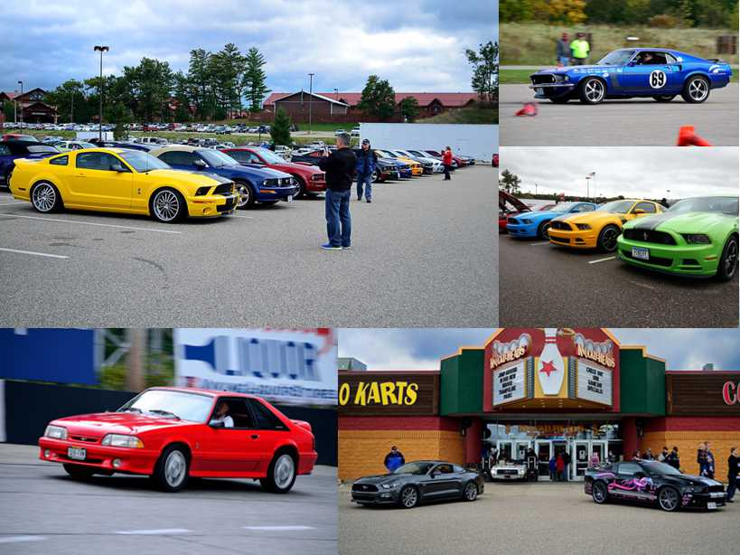 Mustangs 2.jpg