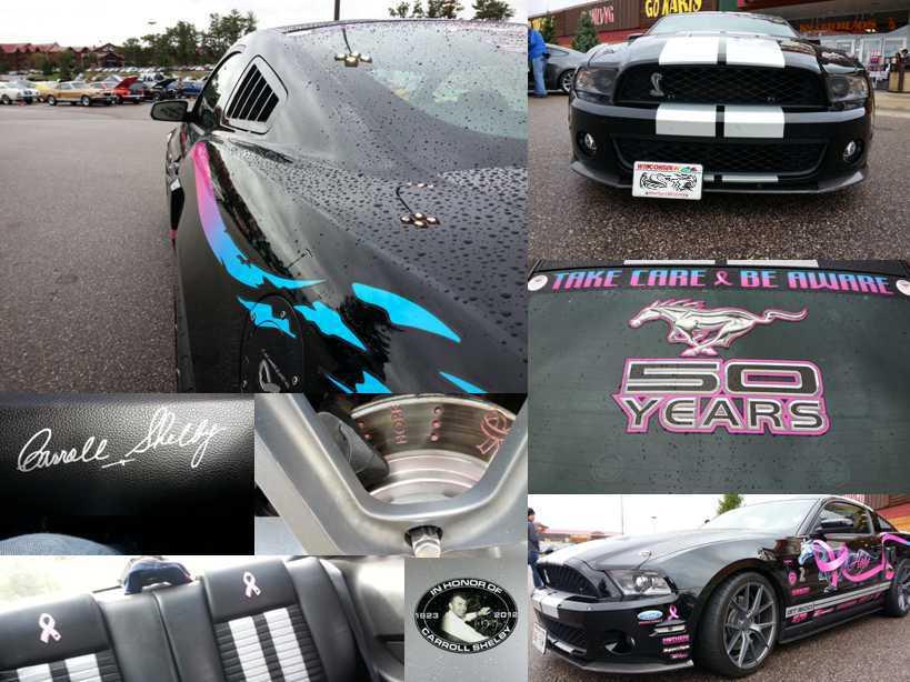 Mustangs 3.jpg