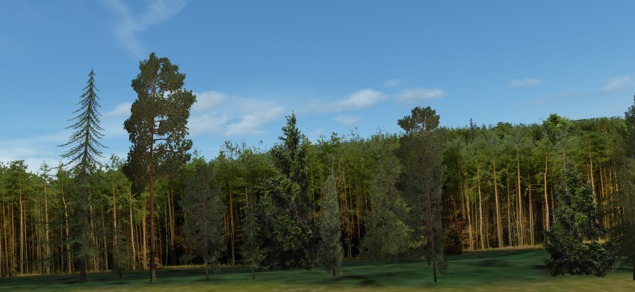 new_treewalls.png