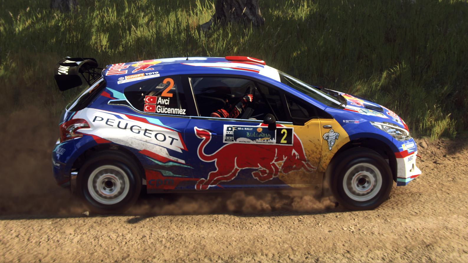 Peugeot 208 T16 R5 03.jpg