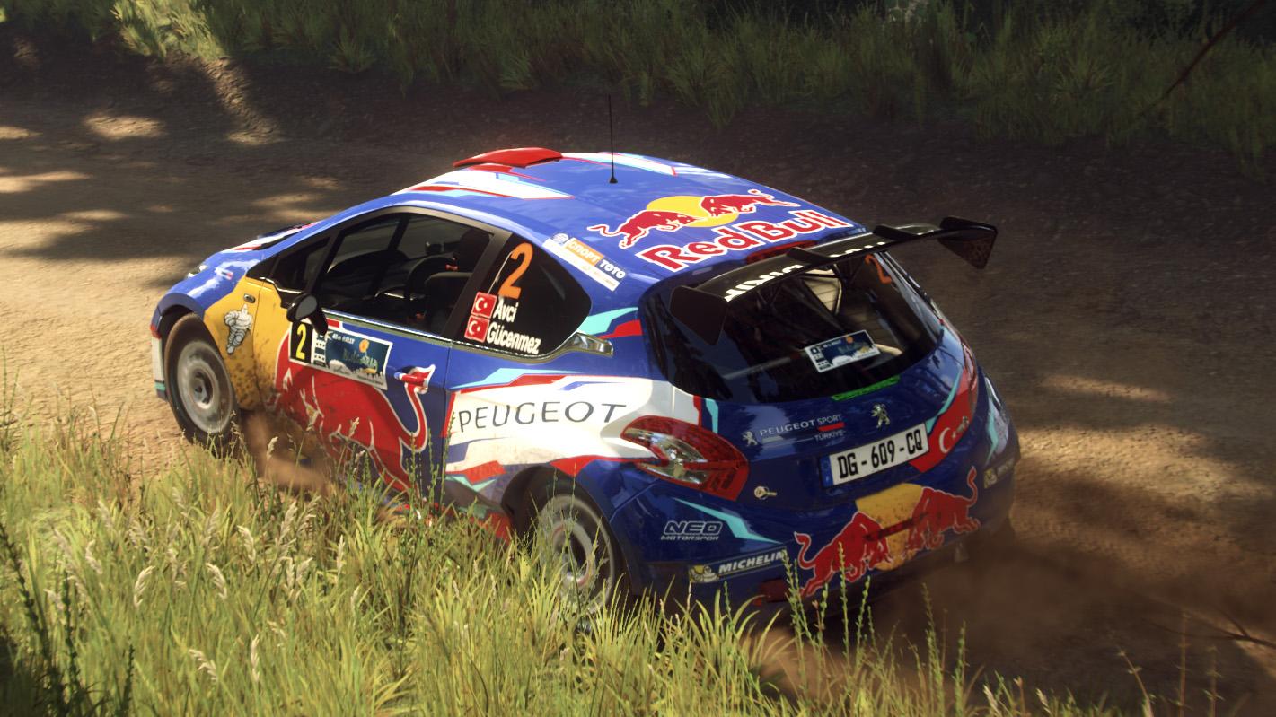 Peugeot 208 T16 R5 04.jpg
