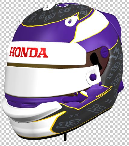 Purple Helmet 1.JPG