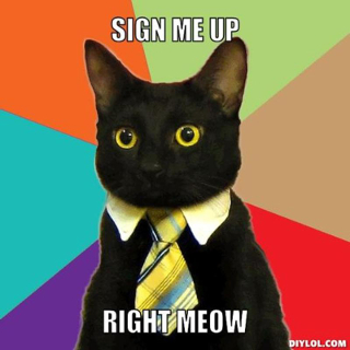resized_business-cat-meme-generator-sign-me-up-right-meow-4a528b.jpg