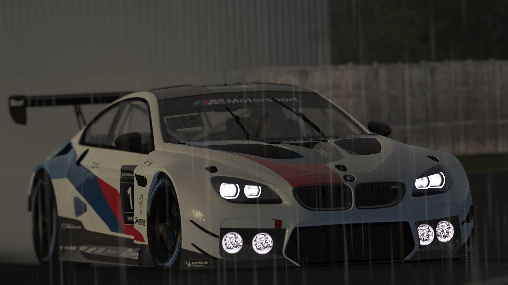 rF2 BMW M6 GT3 4.jpg
