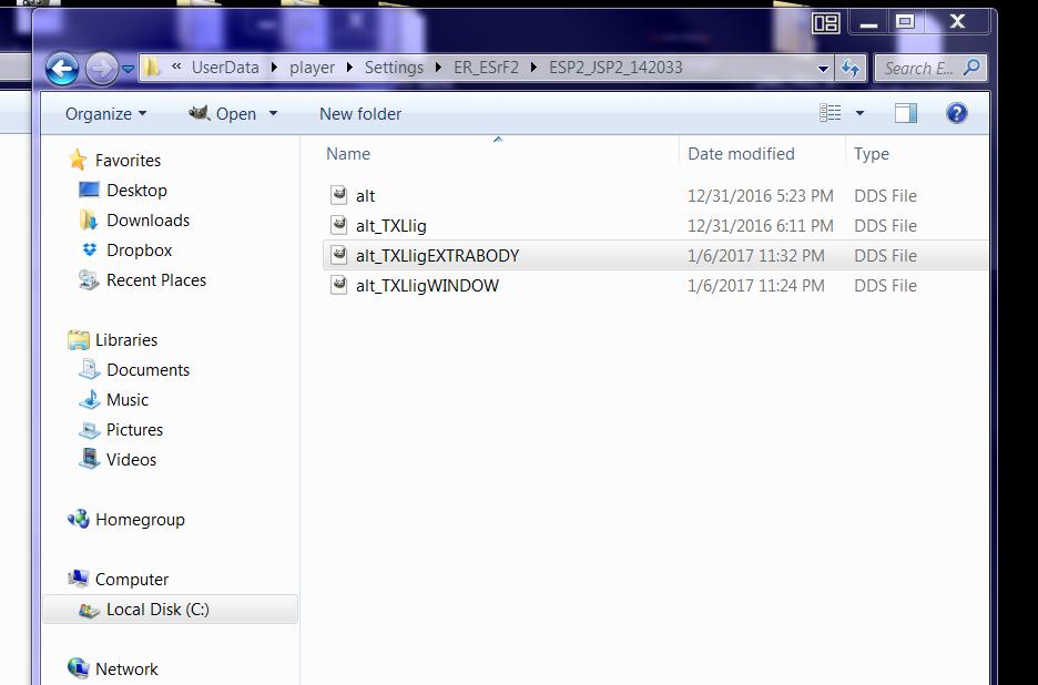 rf2 skin files.PNG