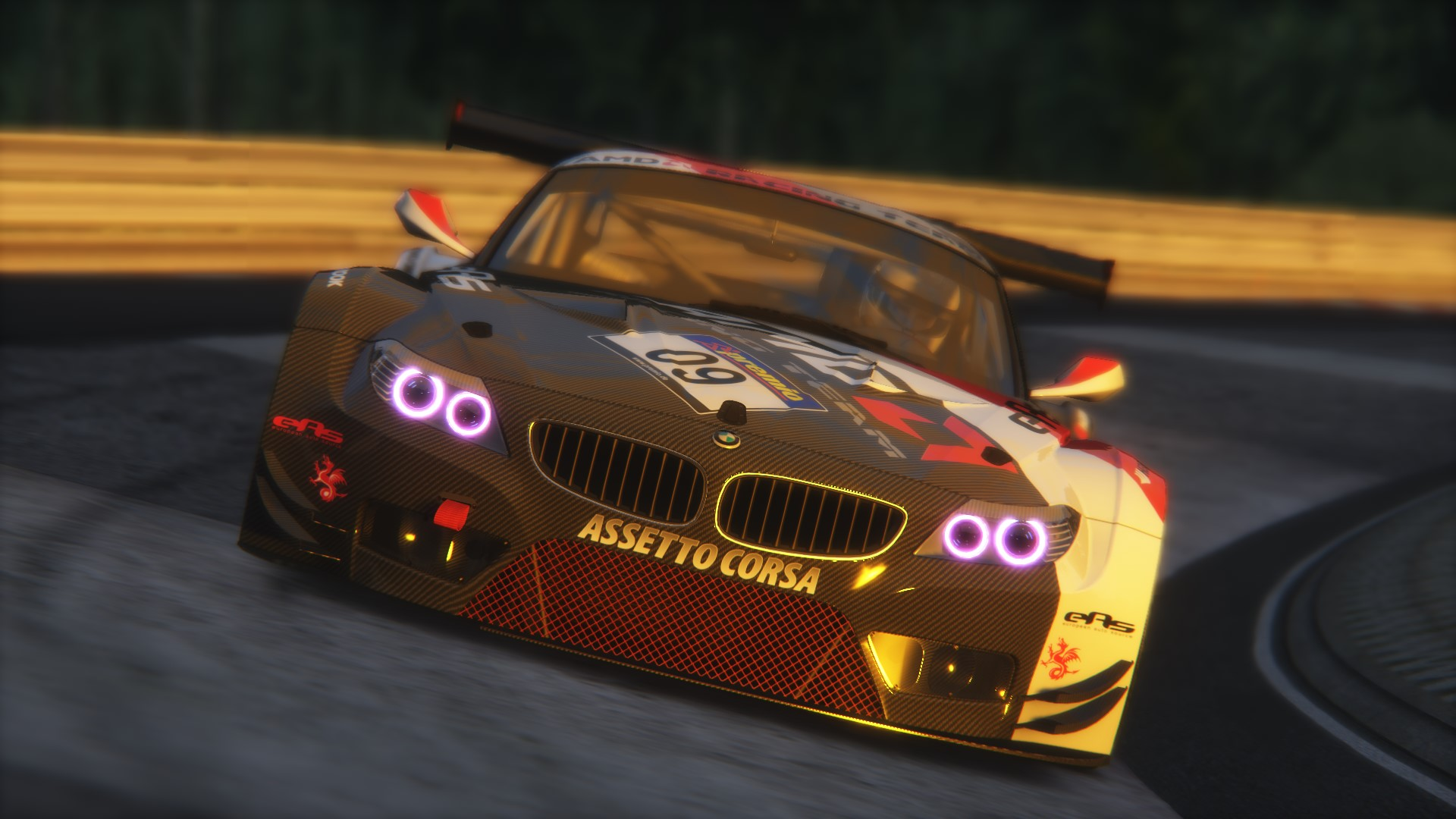 Screenshot_bmw_z4_gt3_nord_snoopy_1.1_14-1-2015-4-5-47.jpg