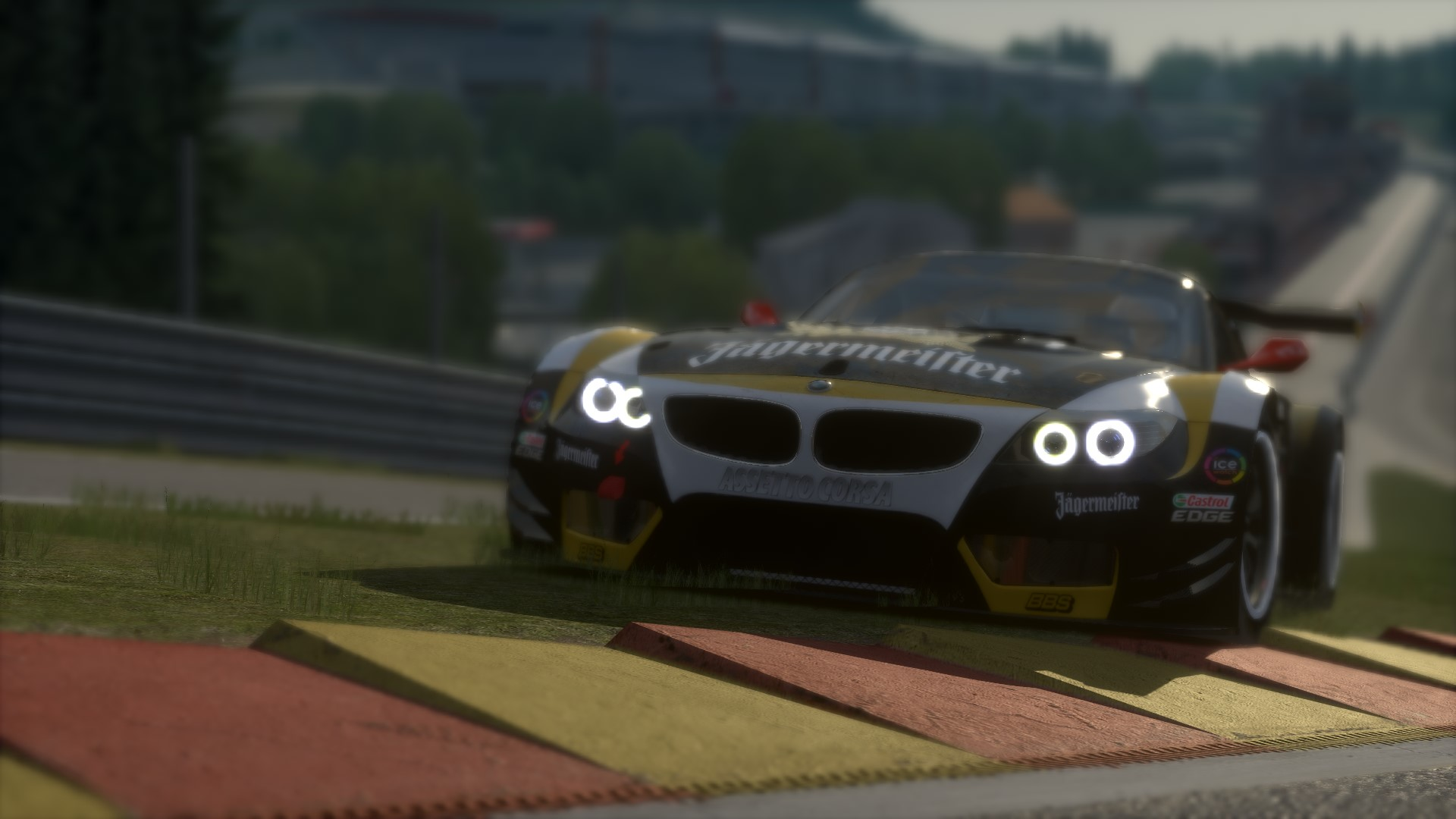 Screenshot_bmw_z4_gt3_spa_5-12-2014-18-28-24.jpg