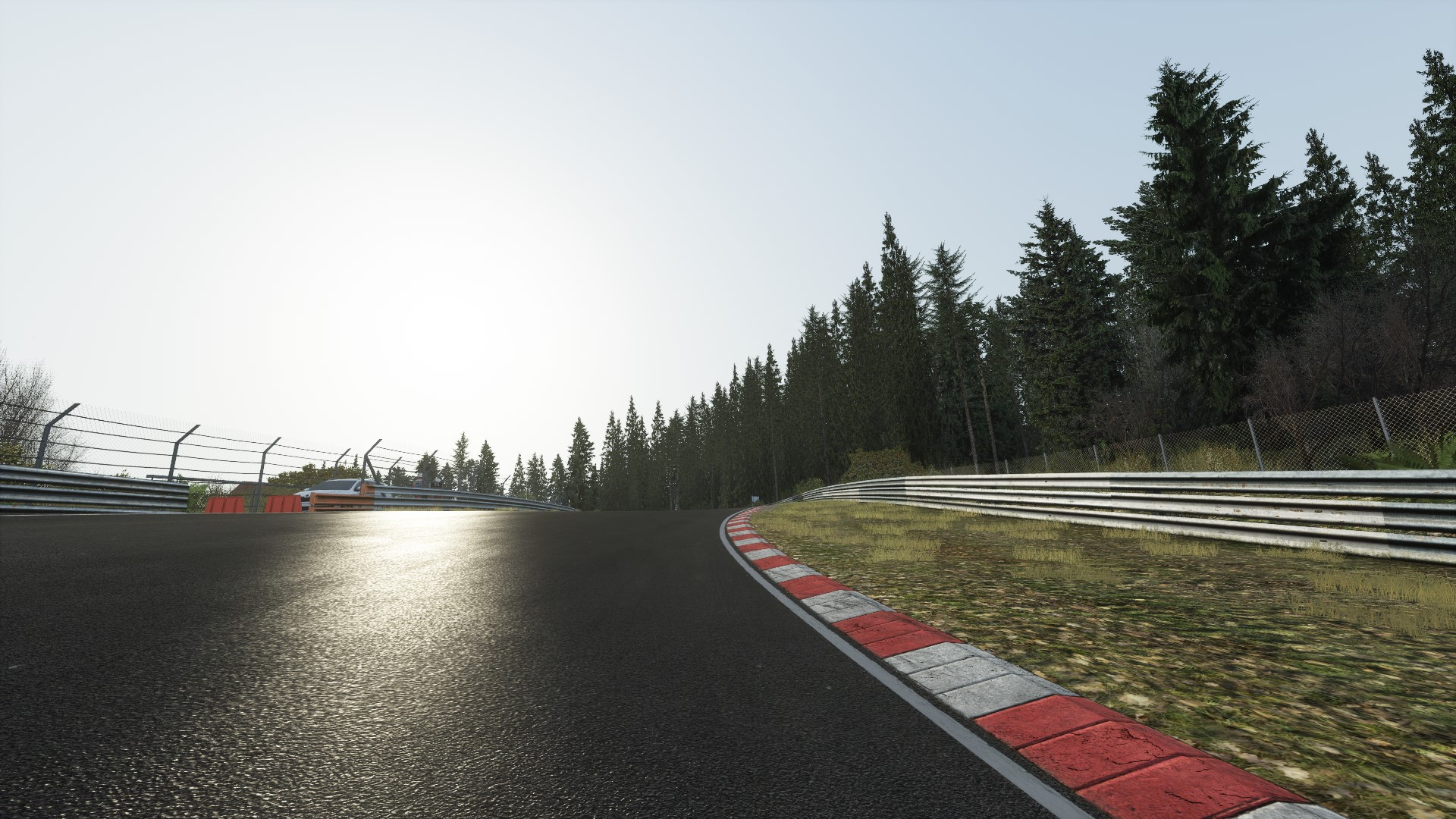 Screenshot_ks_bmw_m235i_racing_ks_nordschleife_10-1-118-4-47-40.jpg