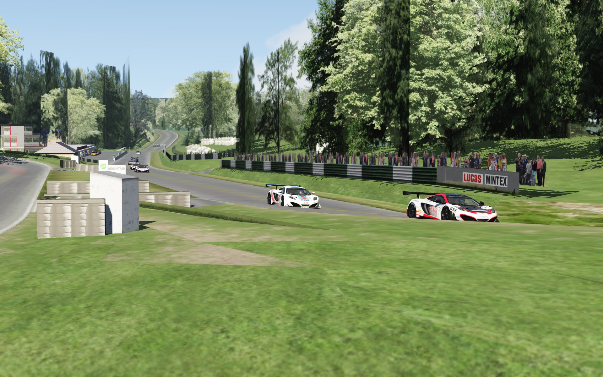 Screenshot_mclaren_mp412c_gt3_cadwell_21-6-115-15-21-55.jpg