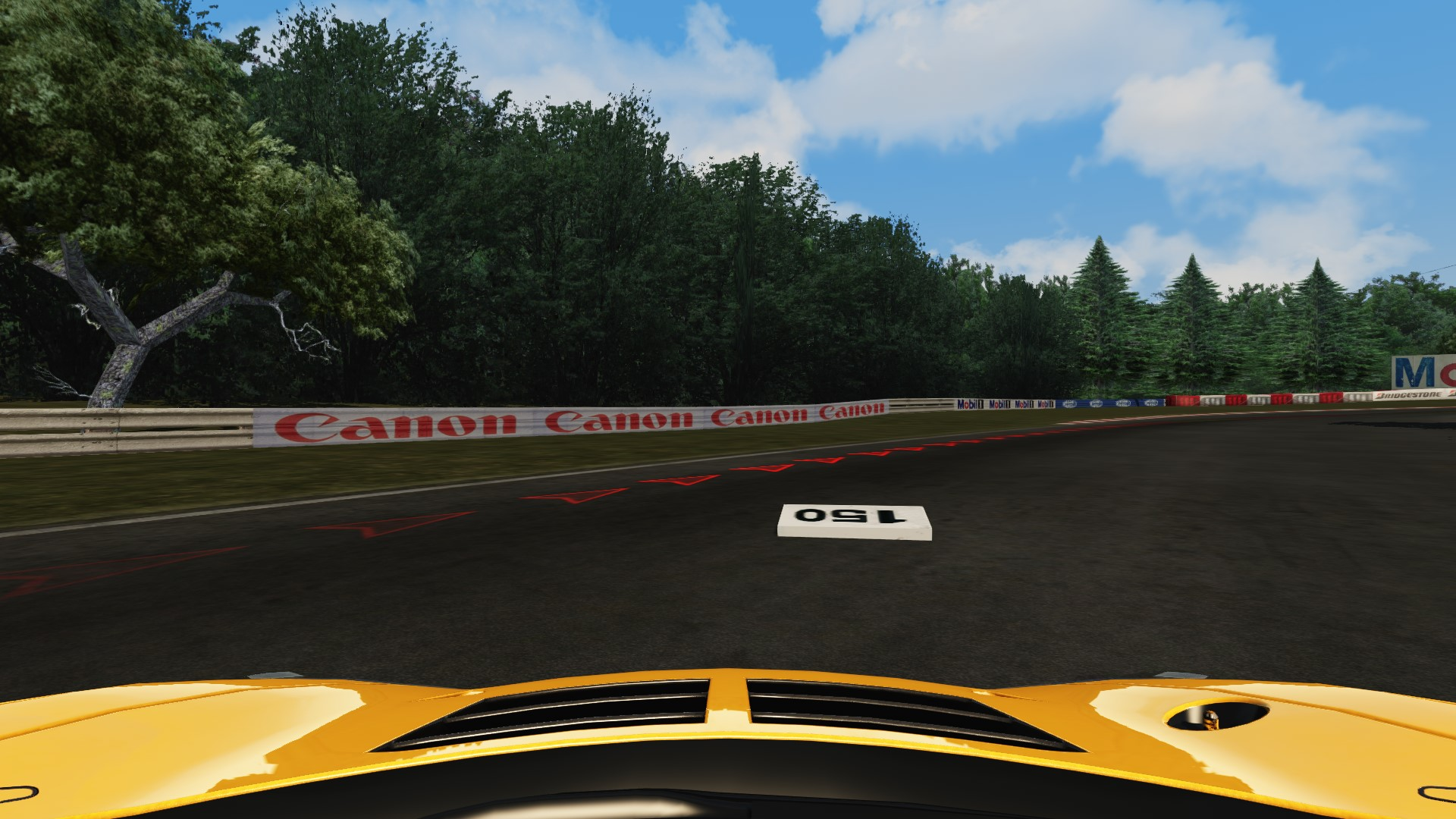 Screenshot_mclaren_mp412c_gt3_pacepark_after few sec.jpg