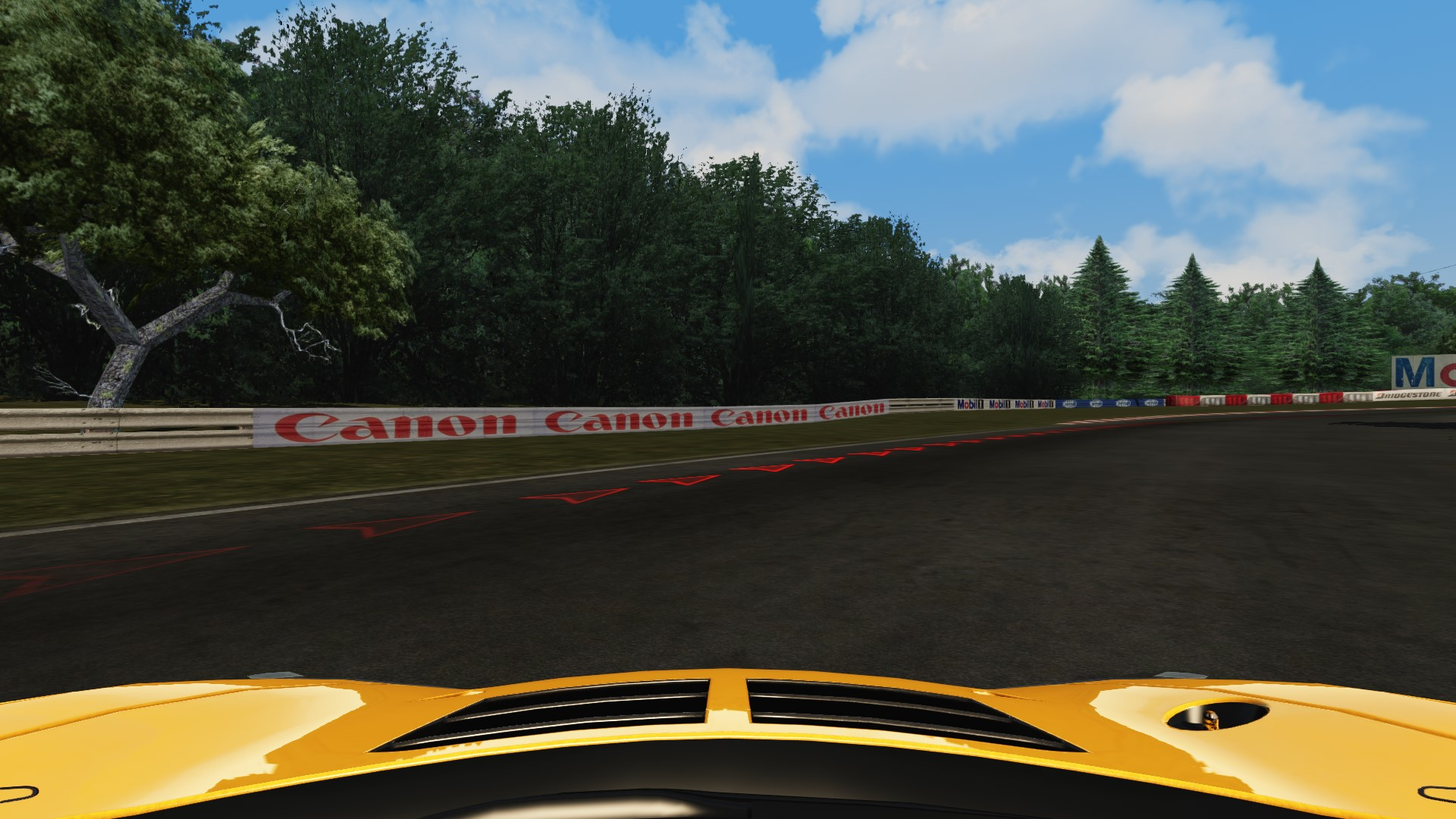 Screenshot_mclaren_mp412c_gt3_pacepark_lost.jpg