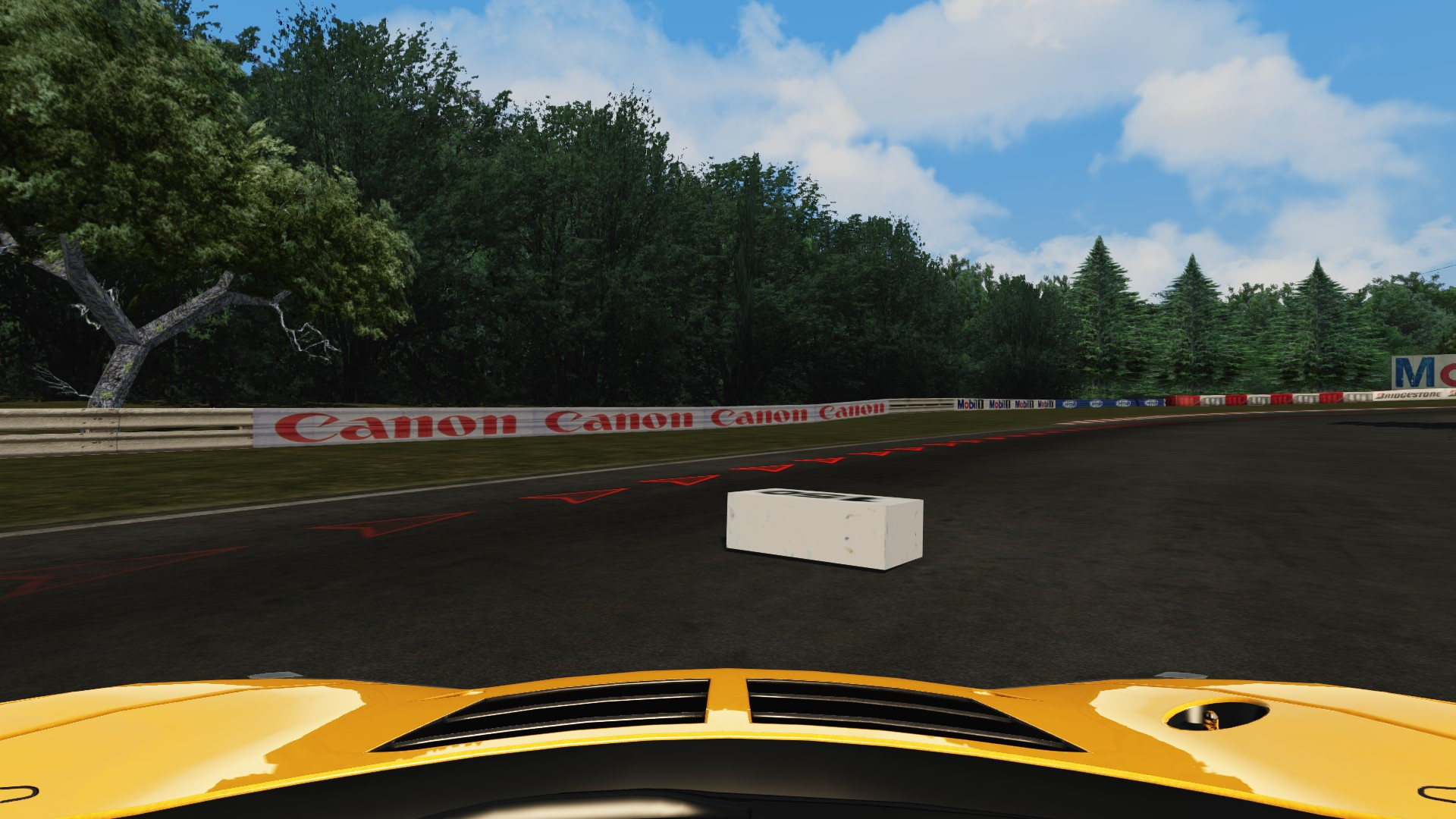 Screenshot_mclaren_mp412c_gt3_pacepark_push down.jpg
