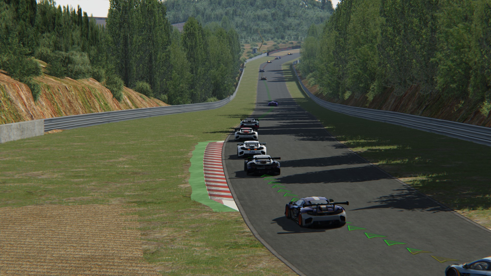 Screenshot_mclaren_mp412c_gt3_sportsland_sugo_7-4-116-9-59-25.jpg