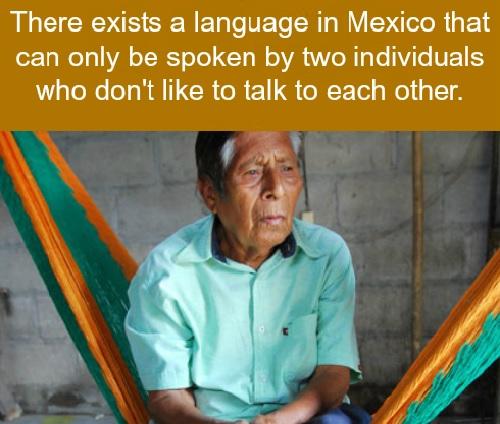 Sprache.jpg