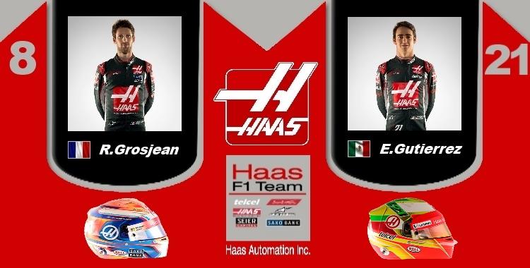 Team Haas Drvers_logo_Team.jpg