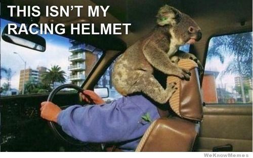 this-isnt-my-racing-helmet.jpg