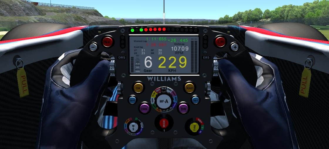 Williams Steering Wheel.jpg