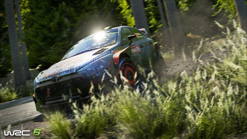 WRC 6 6.jpg