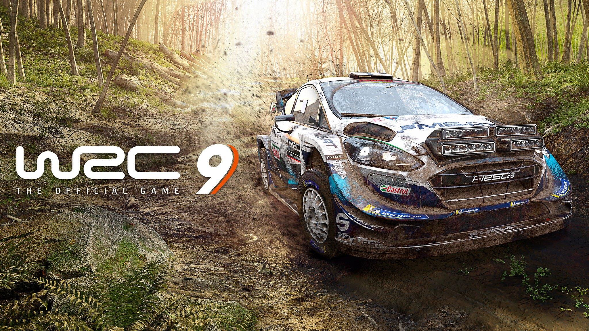 WRC 9.jpg