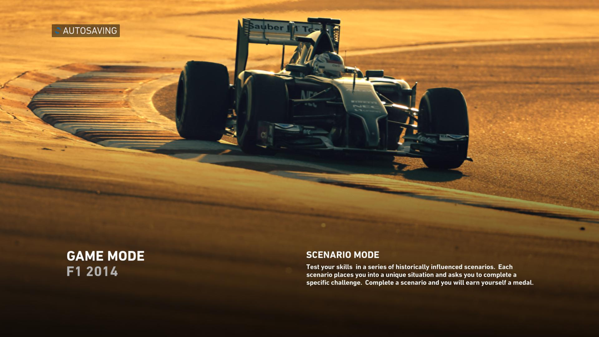 F1 2014 Loading Screen #15