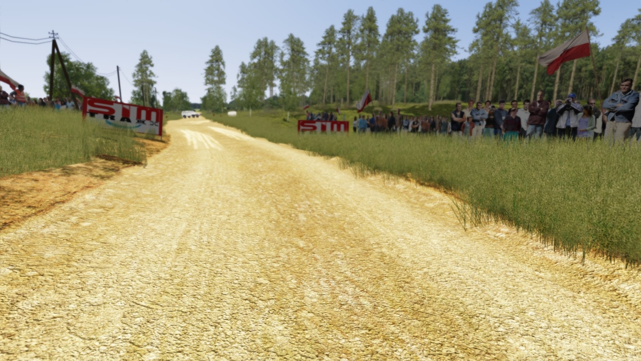 AC / RALLY POLAND SHAKEDOWN / beta v0.85 coming soon
