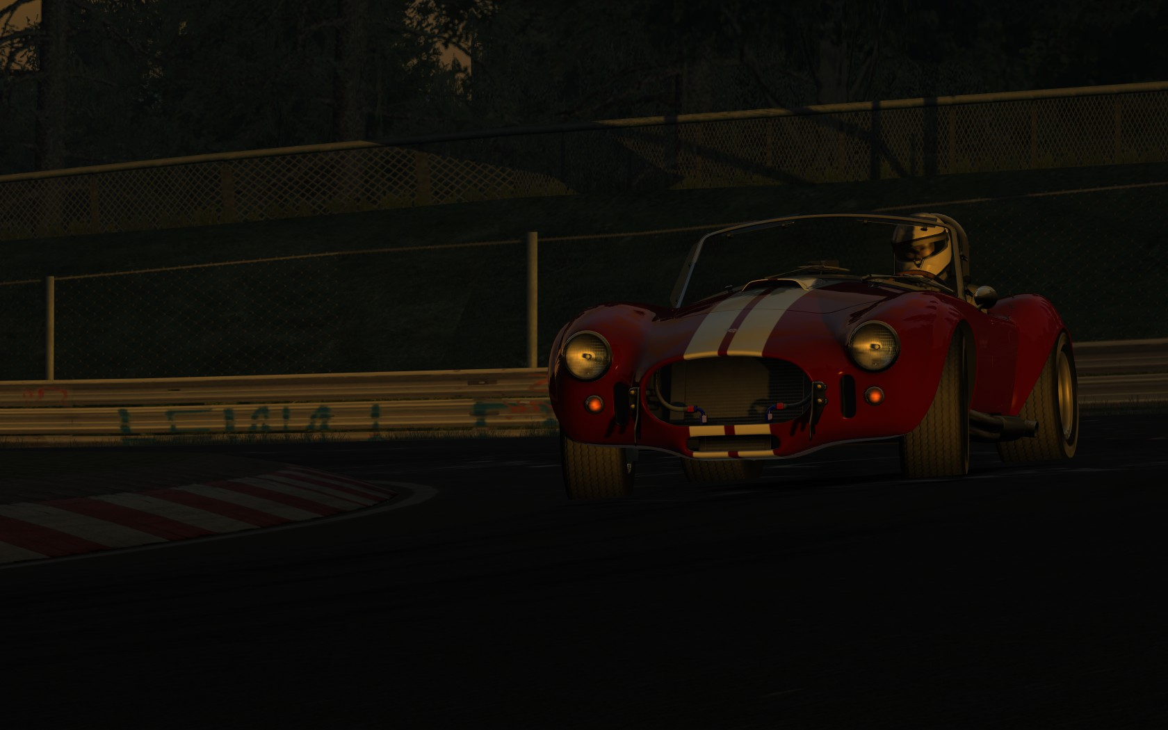 Cobra - Nightschleife