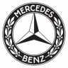 Mercedes 125 years in motorsport livery